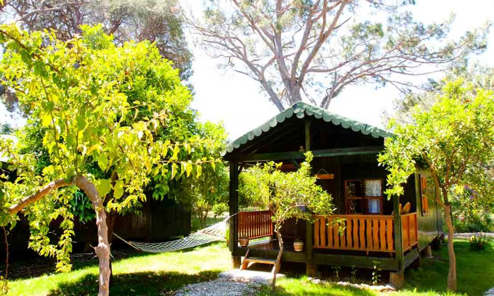 Double Bungalows ( for 2 person )
